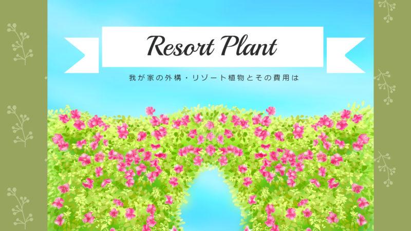 我が家の外構・リゾート植物とその費用は