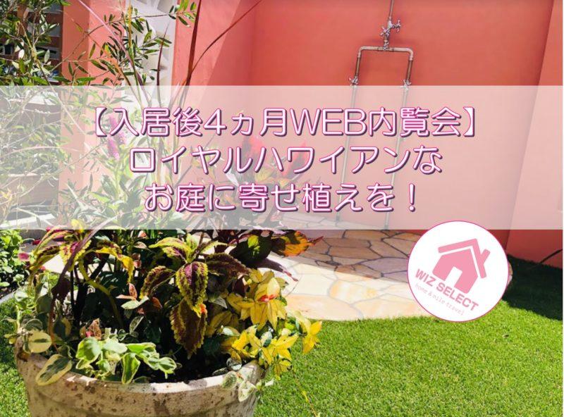 【入居後4ヵ月WEB内覧会】ロイヤルハワイアンなお庭の邪魔なフタに寄せ植えを!