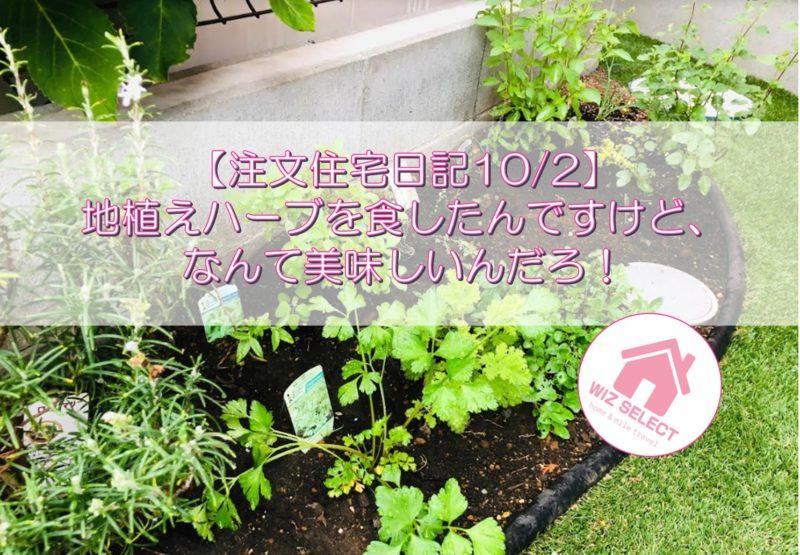 【注文住宅日記10/2】地植えハーブを食したんですけど・・・なんて美味しいんだろ!