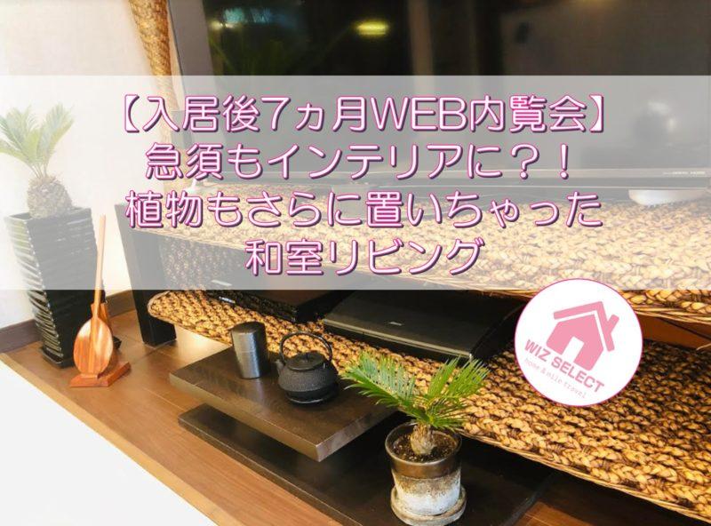 【入居後7ヵ月WEB内覧会】急須もインテリアに?!植物もさらに置いちゃった和室リビング