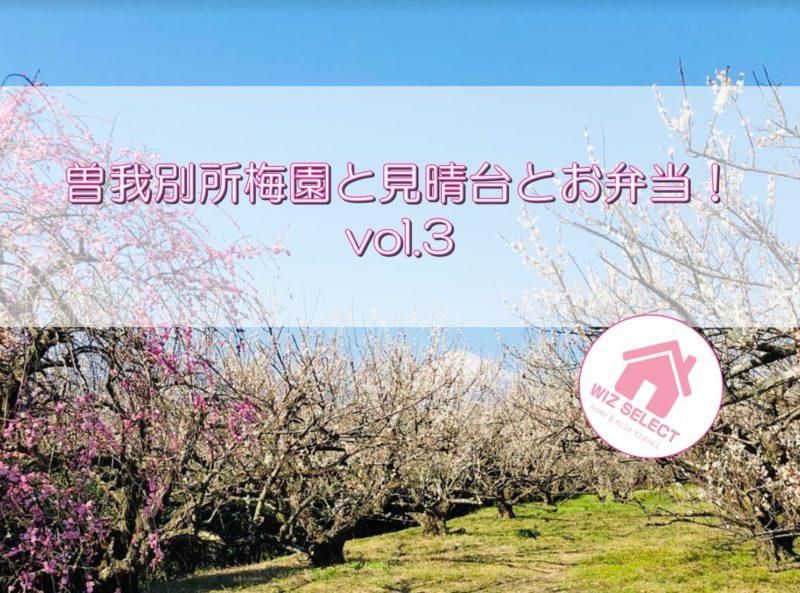 曽我別所梅園と見晴台とお弁当!vol.3