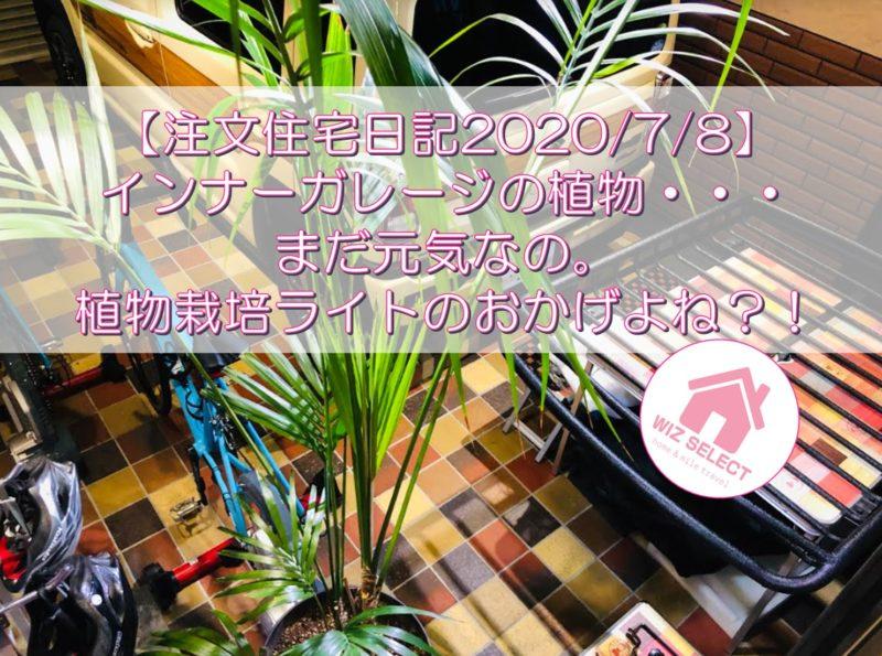 【注文住宅日記2020/7/8】インナーガレージの植物・・・まだ元気なの。植物栽培ライトのおかげよね?!